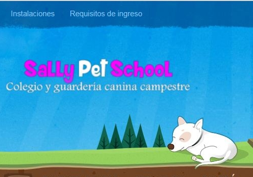 Sally Pet School